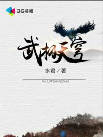 武极天穹小说封面