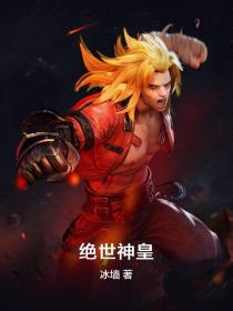 絕世神皇小說封面