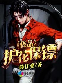 极品护花保镖小说封面