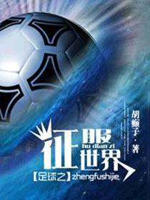 足球之征服世界小说封面