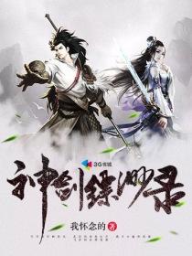 神剑缥缈录小说封面