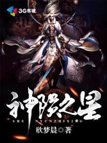 神陨之星小说封面