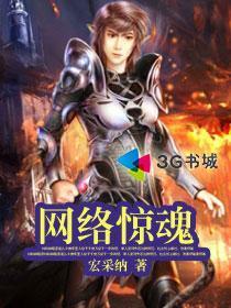网络惊魂小说封面